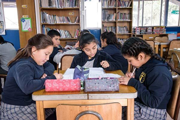 biblioteca colegio nuestra señora de guadalupe