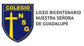 Liceo Bicentenario Nuestra Señora de Guadalupe